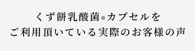 【REBIRTH】 くず餅乳酸菌 (カプセル/90粒/植物性乳酸菌)